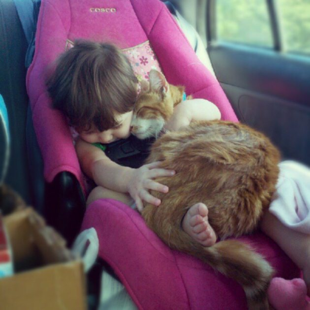Heartwarming-Pictures-To-Make-You-Smile-7
