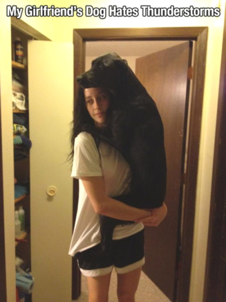 RoyReid.ca-Dogs-are-mans-best-friend-4