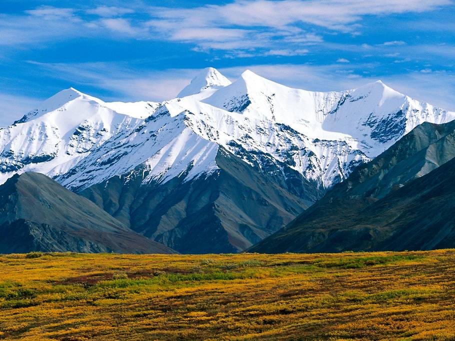 Denali-National-Park-Alaska-2