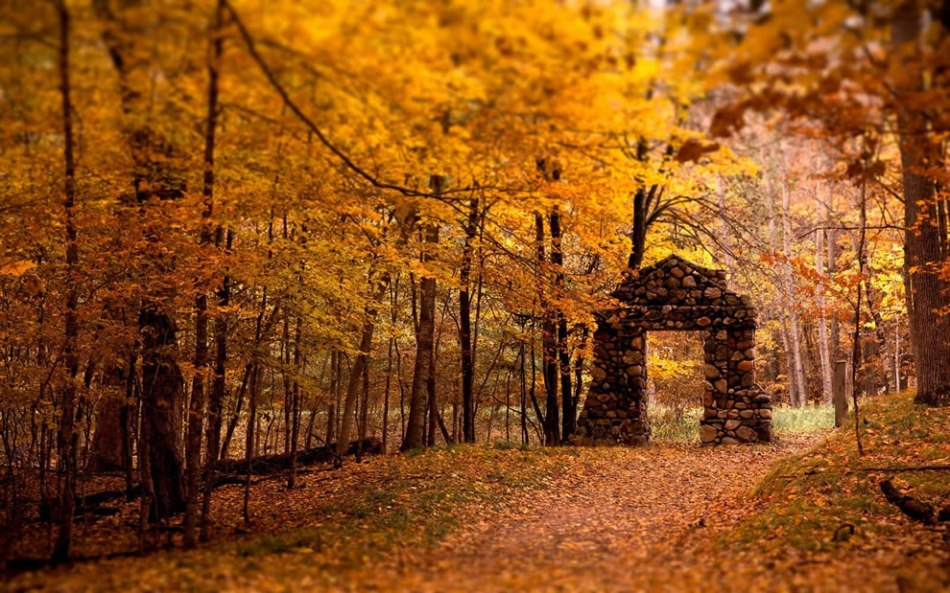 stone-gate-and-autumn