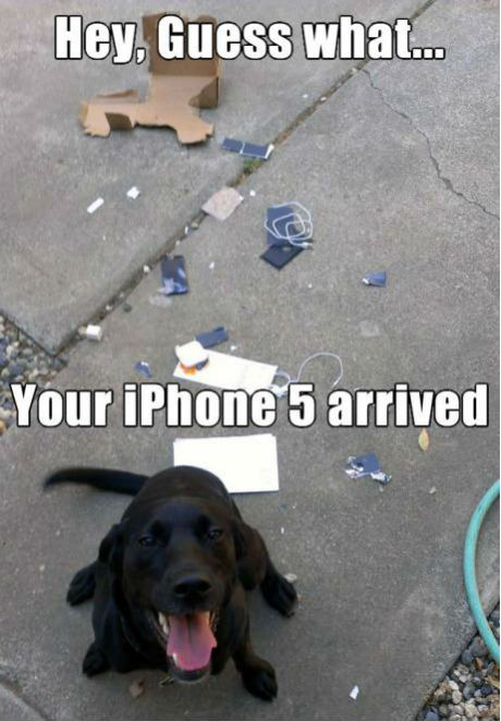 your-iphone-5-arrived