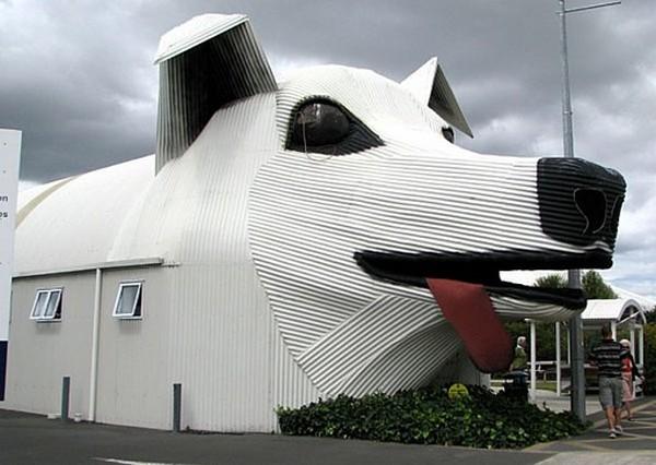 Sheep Dog House,New Zeland