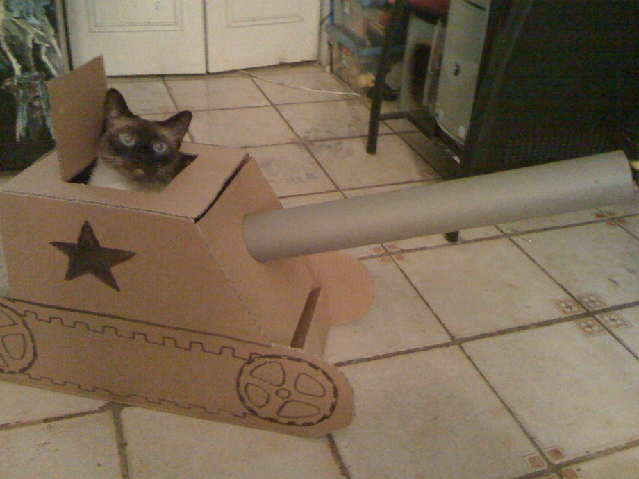 tank-for-cat